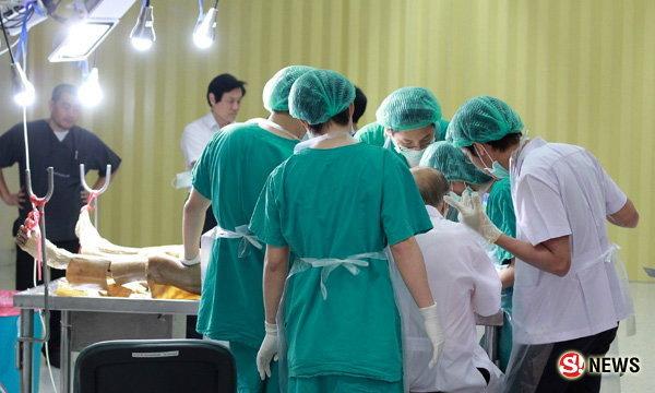 อาจารย์ใหญ่ ชีวิตหลังความตายในห้องเรียนแพทย์